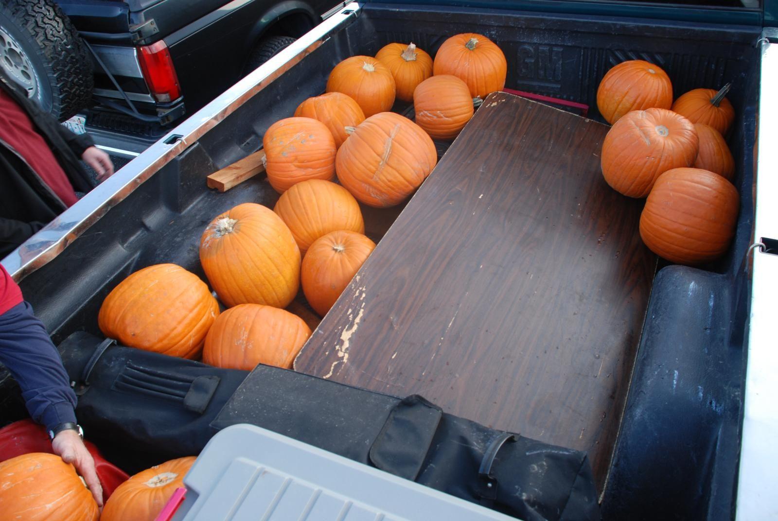 Pumpkins being delivered to event
